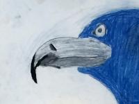 Синя папуга