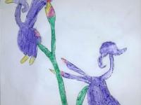 Квітка Хари-бюльбюль
