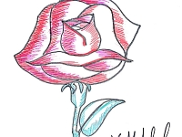 Квітка троянди