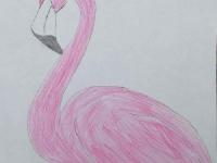Моя пташка
